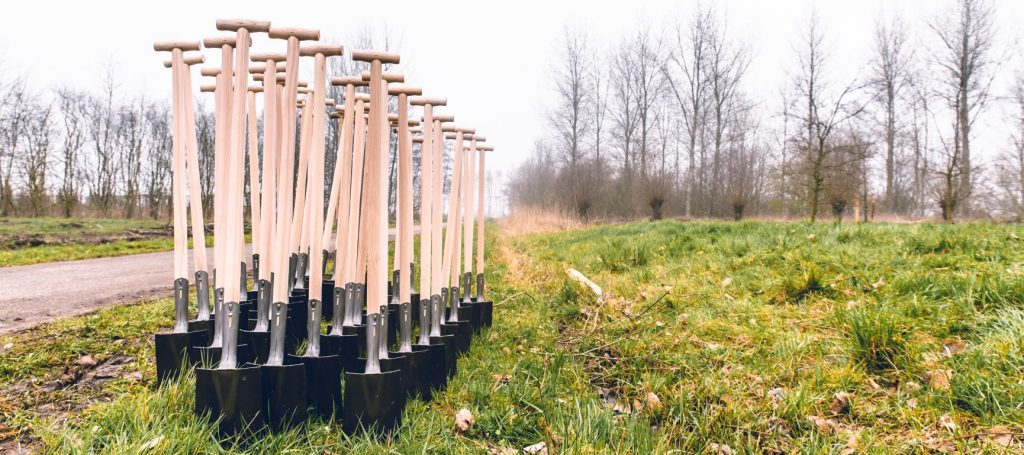 Bomen planten in Nederland